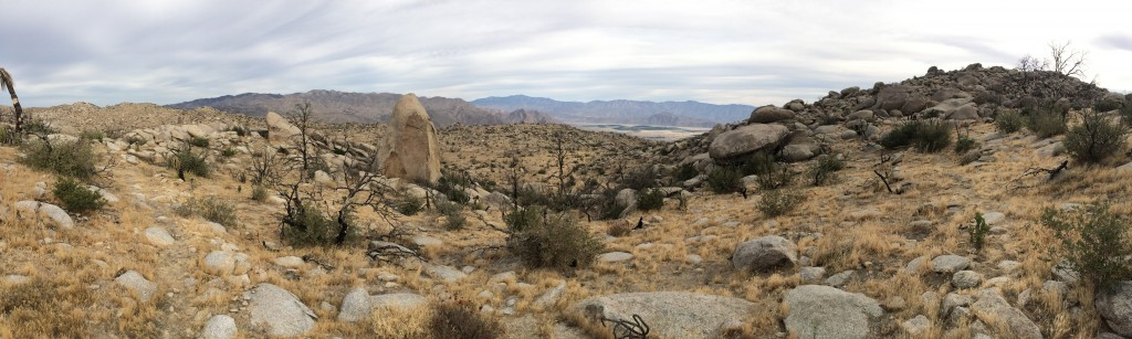 Pinyon Ridge Panorama